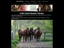 Little Creek Ranch/ Little Creek Western Company/Hc&friends v/Henning Christ